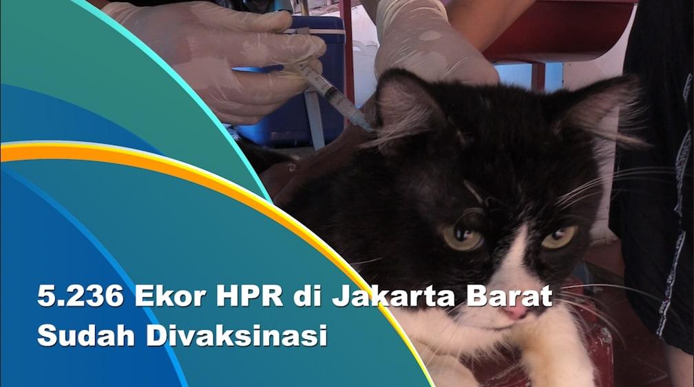 Sudin KPKP Jakarta Barat Gencarkan Vaksinasi Rabies